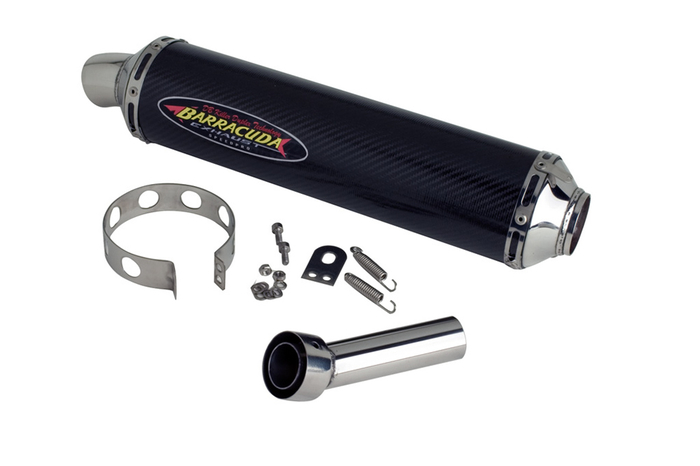 Barracuda RS3 Kawasaki Z 750/S 04-06 Slipon Highup mit EG-ABE